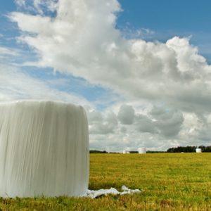 Siláže a bioplyn